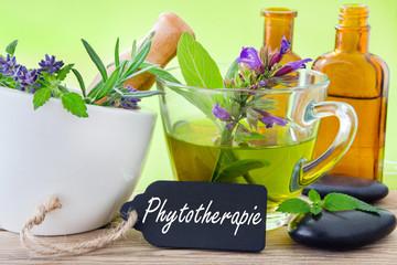 fitoterapia-e-fitoestrogeni-e-fitoprogestinici